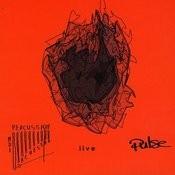 Pulse Percussion Ensemble - Live Songs