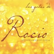 Homenaje A Rocio Durcal Songs