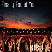 Finally Found You (Tribute To Enrique Iglesias Feat. Sammy Adams) Songs