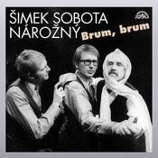 Šimek, Sobota, Nárožný: Brum, Brum Songs