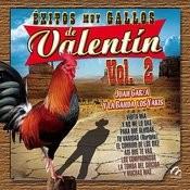 Exitos Muy Gallos De Valentin, Vol. 2 Songs