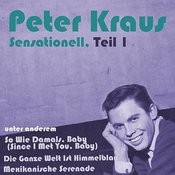 Sensationell, Teil 1 Songs