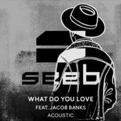 What Do You Love (Acoustic) Songs