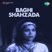Baghi Shahzada Songs