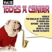 Todos A Cantar Vol. 13 Songs