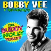 The Buddy Holly Tribute Songs