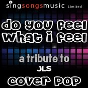 Do You Feel What I Feel Song