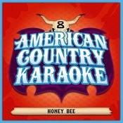 Honey Bee - Sing Country Like Blake Shelton - Single Songs
