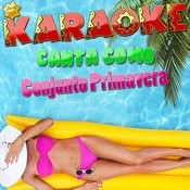 Karaoke Canta Como Conjunto Primavera Songs
