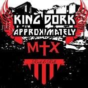 King Dork Approximately Song