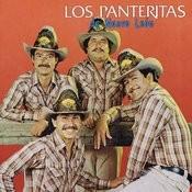 Las Panteritas De Nuevo León Songs