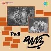 Padi Songs