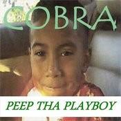 Peep Tha Playboy Songs