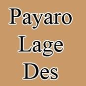 Payaro Lage Des Songs