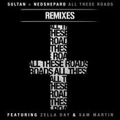 All These Roads Remixes (feat. Zella Day and Sam Martin) Songs