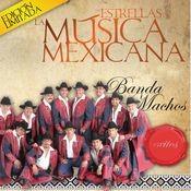 Las Estrellas de la Musica Mexicana (USA) Songs