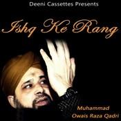 Ishq Ke Rang Songs