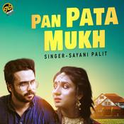 Pan Pata Mukh Sayani Palit Full Mp3 Song