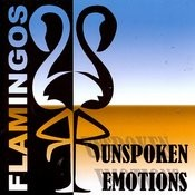 Unspoken Emotions Songs