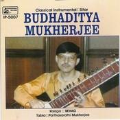 Classical - Instrumental - Sitar Songs