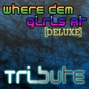 Where Them Girls At (David Guetta Feat. Nicki Minaj & Flo Rida Tribute) - Deluxe Songs