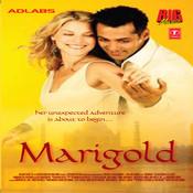 Marigold Songs