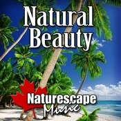 Natural Beauty (Nature Sound With Music) Songs