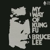 My Way Of Kung Fu, Pt. 8 Song