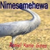 Nimesamehewa Songs