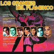 Los Grandes Del Flamenco Songs