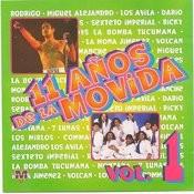 El Pavo Y La Pava Song