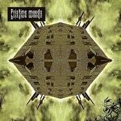 Pristine Moods Songs