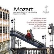 Quatuor En Ré Pour Flûte, Violon, Alto Et Violoncelle, K. 285: II. Adagio Song