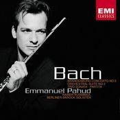 Bach: Brandenburg Concerto No. 5 - Orchestral Suite No. 2 - Trio Sonata - Partita. Songs