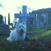 The Adventures Of Greyfriars Bobby Music From The Original Motion Picture Songs