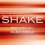 Shake (Alex Kenji Instrumental Dub) Song
