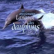 Le Mysterieux Langage Des Dauphins Songs