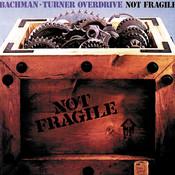 Not Fragile Songs
