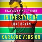 That's My Kind Of Night (In The Style Of Luke Bryan) [Karaoke Version] - Single Songs