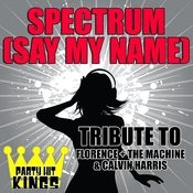 Spectrum (Say My Name) [Tribute To Florence + The Machine & Calvin Harris] Song