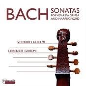 Sonata For Viola Da Gamba In D Major, Bwv 1028: IV. Allegro Song