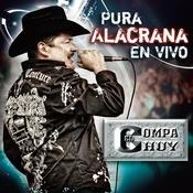 Al Nuevo Altata  Song