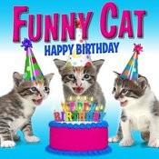 Happy Birthday Funny Cats Singing Version Mp3 Song Download Happy Birthday Funny Cats Singing Version Happy Birthday Funny Cats Singing Version Song On Gaana Com