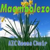 Afrika Song