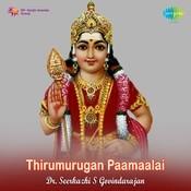 Dr Seerkhazi S Govindrajan Telegu Songs