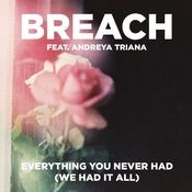 Everything You Never Had (We Had It All) (feat. Andreya Triana) (Extended Club Version) Songs