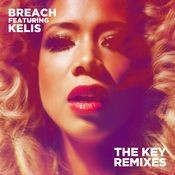 The Key (feat. Kelis) [Dub Phizix Remix] Song
