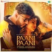 Paani Paani Song