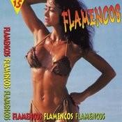 Flamencos Songs