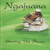 Shaving the Sheep Songs